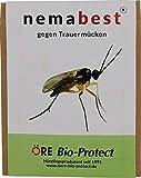 nemabest® SF Nematoden 6 Mio. (60 Pflanzen/12m²) gegen Trauermücken