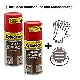 Xyladecor gegen Holzwurm Holzwurmmittel Bekämpfung von Hausbock Holzwürmer innen Holzwurmtod Set mit Zubehör 2 x 0,125 l