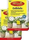 Aeroxon – Gelbsticker, Gelbfalle, Gelbtafeln, 20 teilbare Leimtafeln, perfekt bei Ungeziefer, Zuhause und auf dem Balkon, Für Trauermücken, Blattläuse, Thripse, weiße Fliegen