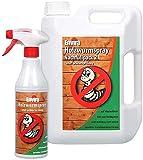 Envira Holzwurm-Spray - Holzwurm Ex Gegen Holzschädigende Insekten Mit Langzeitschutz - Auf Wasserbasis - 500 ml + 2L