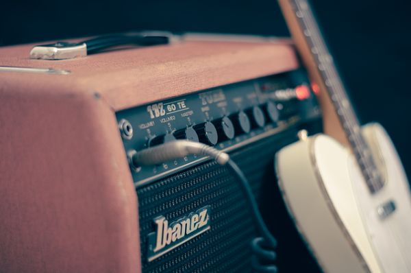 Holzwurm Geräusche Knacken Vibrationen vertreiben