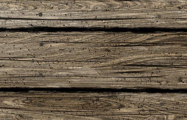 Holzwurmspray Test Erfahrungen Envira